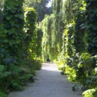 750. Geburtstag, Europa-Garten, Hansetag