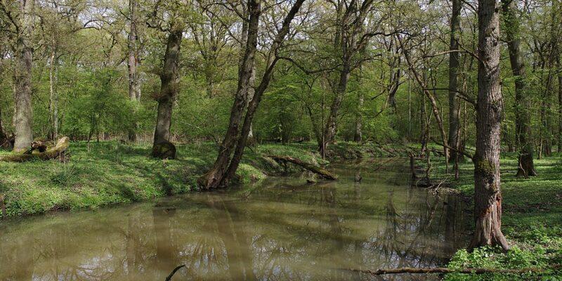 Naturschutzgebiete in der Stadt Frankfurt (Oder)